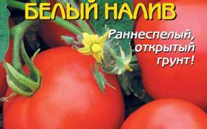 Томат-БЕЛЫЙ-НАЛИВ