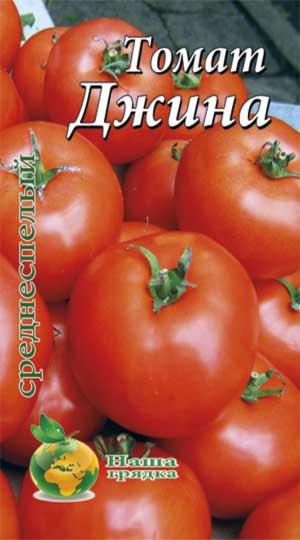 dzhina-tomat