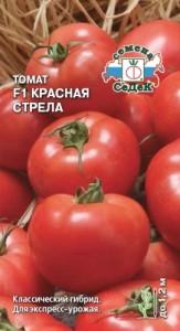 krasnaya-strela_agp_