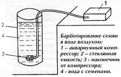podgotovka-semyan
