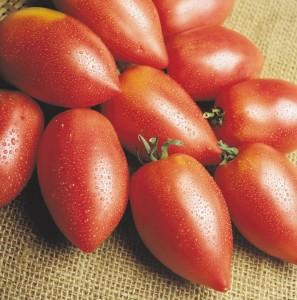 ракета помидоры