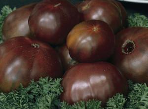 chernye-pomidory-sorta-6