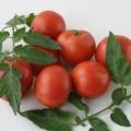 tomat_dubok