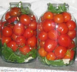 konservirovanie pomidori3