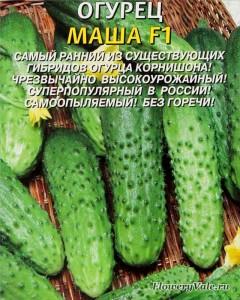 Semena_ogurzov_01