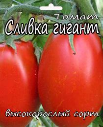 tomat-slivka-gigant5545