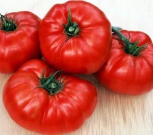 tomat-vedmezha-lapa-serednoranny-velikiy-pomdor_561
