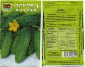 q_cucumber1