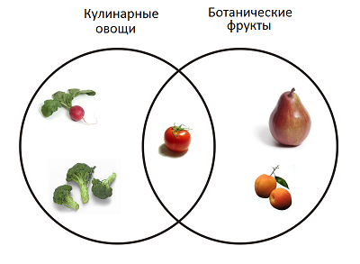 fruits_vegetables_11