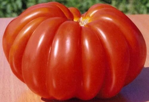помидоры японский краб фото